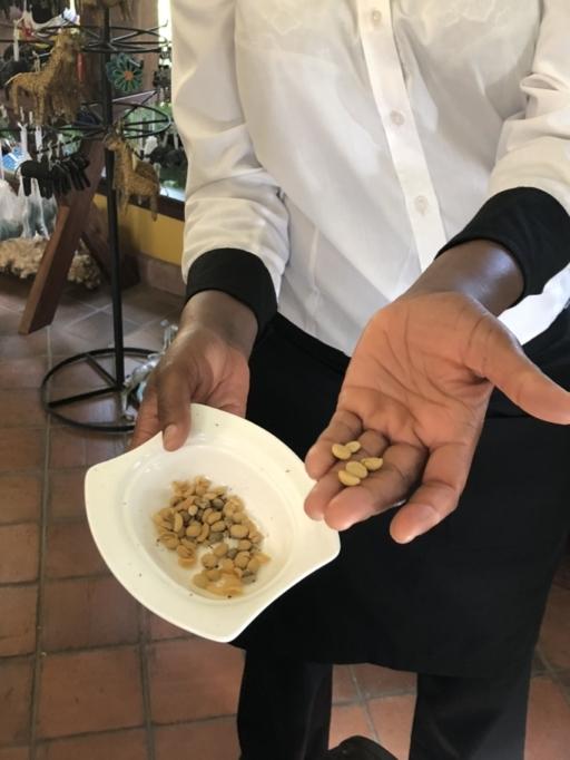 Coffee, Arusha, Tanzania, Coffee Plantation, Coffee Beans