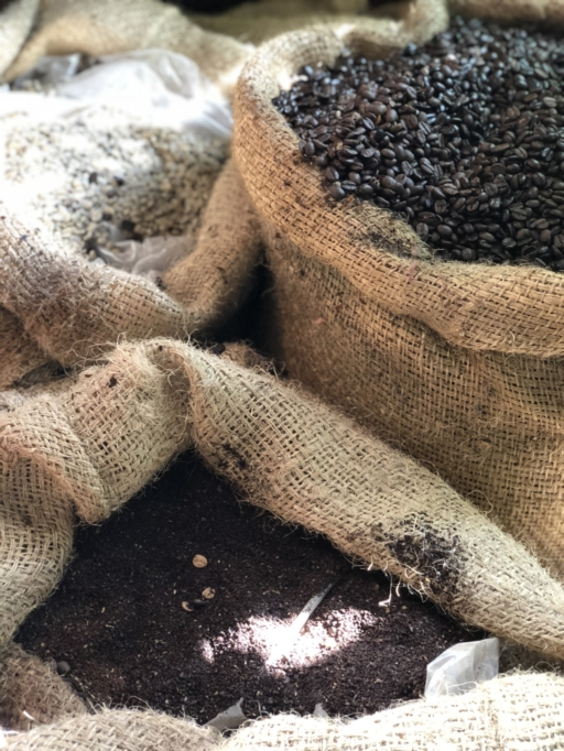 coffee, arusha, plantation