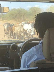 Heading to the Bush!